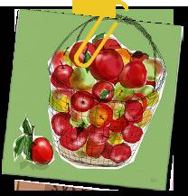 Ruccolasallad med apple(ルッコラサラダ・メ・エップレ)